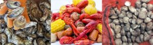 Cover photo for Cultured Seafood Festival, March 9th in New Bern