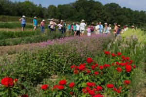 Cover photo for 45 Farms on the Piedmont Farm Tour April 28-29!