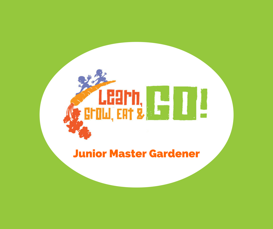 Learn, Grow, Eat and Go poster